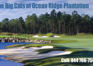The Big Cats Golf Courses at Ocean Ridge Plantation